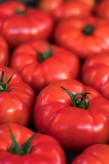 Stock Tomatoes Freshness Nature Plants Vegetable Market Vegetables & Fruits Abundance Axvo Close-up Food Food And Drink For Sale Fresh Freshness Fruit Fruits Full Frame Healthy Eating Large Group Of Objects Market Market Place Raw Food Red Tomato Vegetable Vegetables