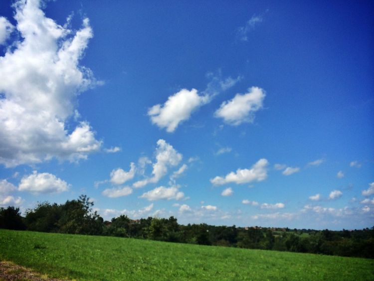 Gnocchi In Vino Veritas Cloud_collection  Sky_collection
