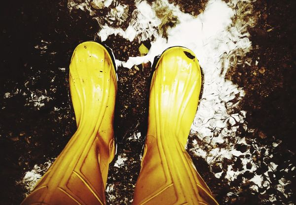 Boots Water Yellow Forest No People Day Outdoors Outdoor Photography Nature Photography Yellow Color Nature Autumn Human Leg Low Section High Angle View Pair One Person Human Body Part People Adult One Man Only Only Men Paint The Town Yellow Perspectives On Nature