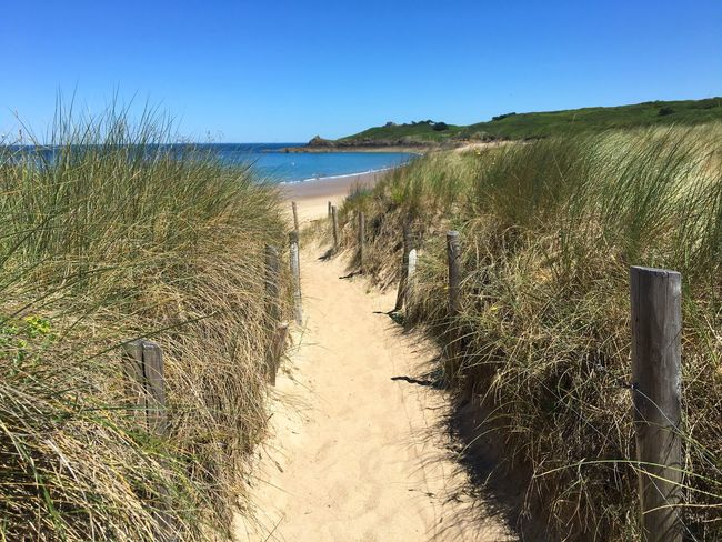 Walking to the beach, Bretagne, France, Dünen, Water Sky Beach Sea Clear Sky Nature Tranquility Sunlight Beauty In Nature Land Tranquil Scene Sand Outdoors Blue