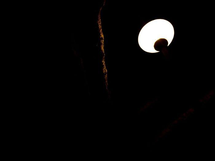 moon?light?
