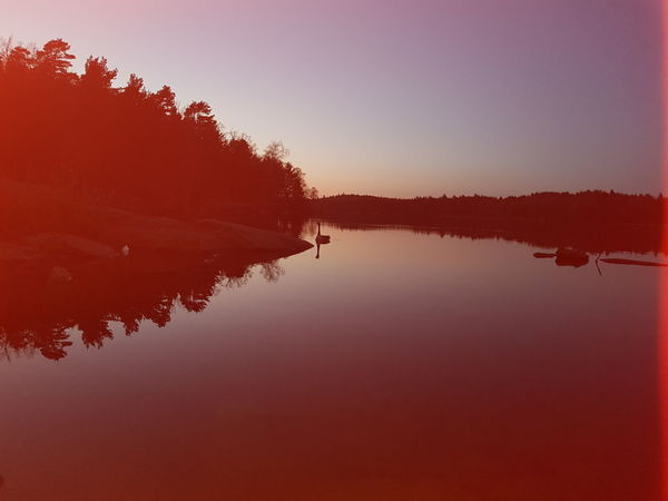 Vild Life Seecret Outdoor Pictures Nightphotography Nihgt View Natural Beauty Sky Standing Water Reflection Lake Calm