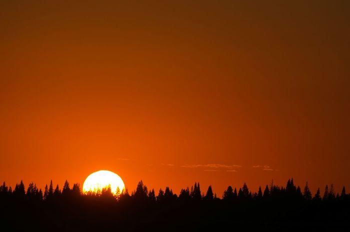 """Sunset Aglow"" Sunset Sun_collection Sky_collection Sunset_collection Dusk Nature Skyporn EyeEm Best Shots Sun Silhouette"