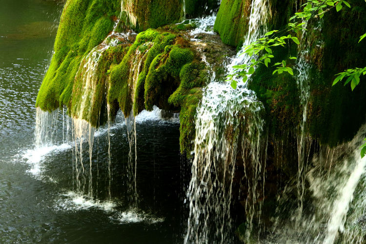 Water Motion Waterfall Beauty In Nature Nature Scenics - Nature Flowing Water Long Exposure Flowing Blurred Motion No People Forest Rock Day Outdoors River Plant Environment Tree Power In Nature Falling Water Rainforest Running Water