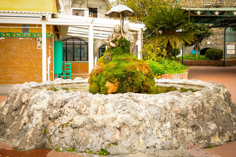 Italy Amalfi  Amalfi Coast Plant Architecture Built Structure Tree Building Exterior Solid Nature Rock Building Rock - Object Day Growth No People Outdoors Wall House Palm Tree Green Color Potted Plant Water