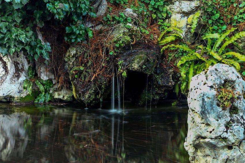 Botanischer Garten. Basel Switzerland Canonphotography Was Nice