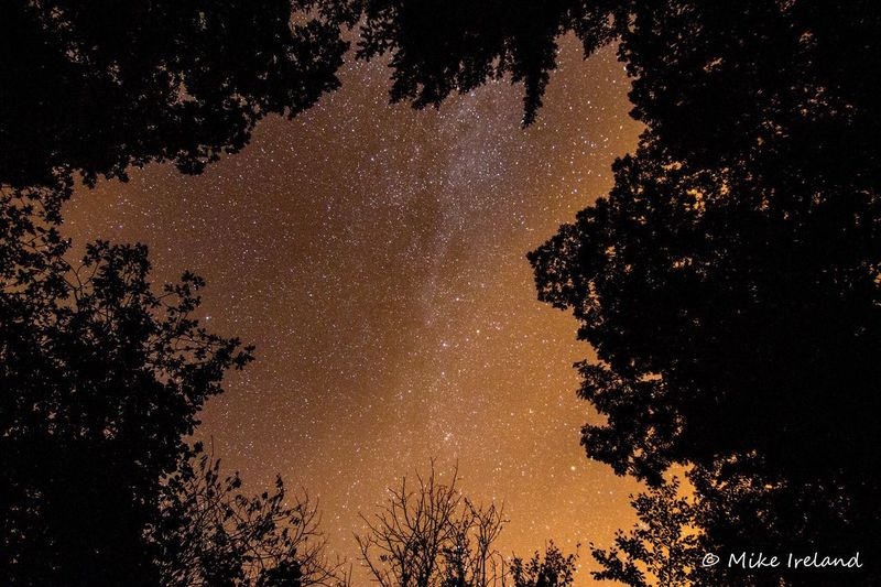 Stars over the Afan Forest, Wales Star - Space Tree Astronomy Space Galaxy Milky Way Night Beauty In Nature Sky Nature Constellation Space And Astronomy No People Low Angle View Outdoors Scenics Star Field Space Exploration Wales EyeEmNewHere