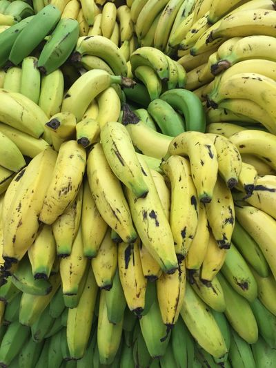 Colombia Fruta Banano Banana Fruit