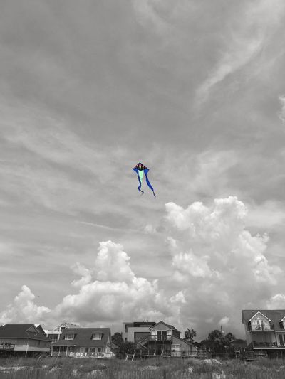 High as a kite Beach Life Folly Beach IPhone Colorsplash