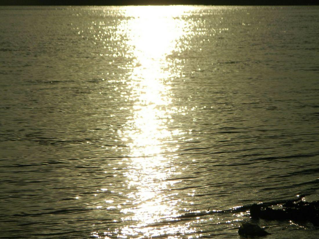 Yamuna River River Water Eyeemphotography EyeEmwaterlover EyeEmBestPics Reflections