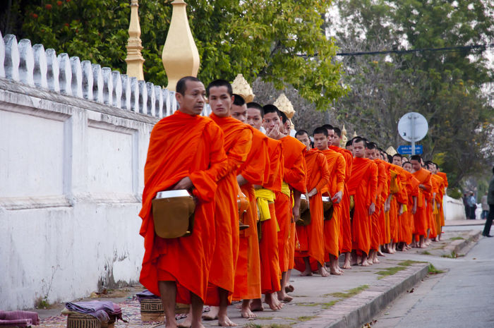 Monks Collecting Alms - Luang Prabang - Laos ALMS Buddhist Sarong Collecting Alms Laos Large Group Of People Luang Prabang Monks