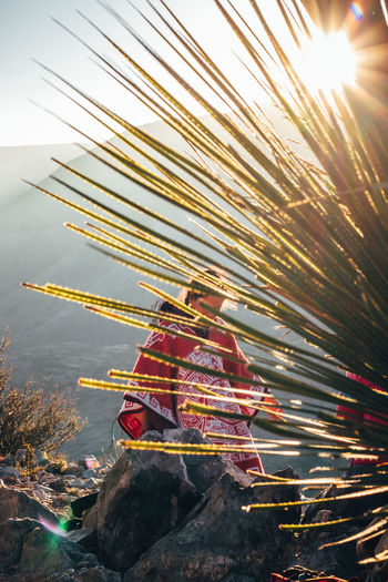 Woman standing on mountain seen through plant during sunset
