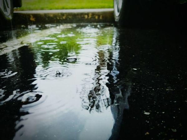 Rainy Days Rain Raindrops Water Water Reflections Reflection Drops Grass Tire Rippled Rippled Water Rippled Reflection