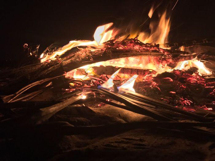 Firewood Bonfire