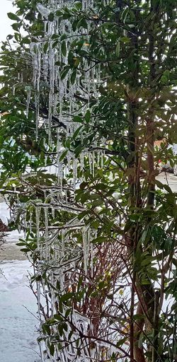 Ice Winter Winter Wonderland Look! Hdr_Collection Outdoors Samsung Galaxy S6 Edge+ Eye4photography  HDR Taking Photos Nature's Diversities Ice Age Tranquil Scene Snow Ice Nature Beauty In Nature