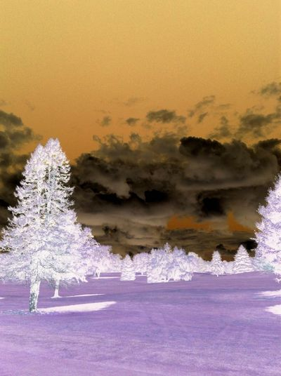 Took on golf course on Thursday... Beauty In Nature No People Scenics Being Creative. Expressing Myself. Negative Effect Negative Mode Negative Photography