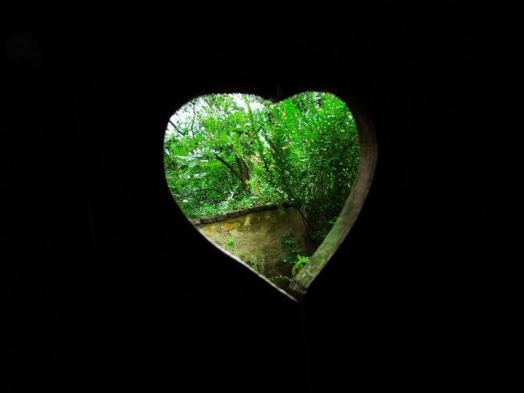 Farm Green Heart Latrine Nature W17092016