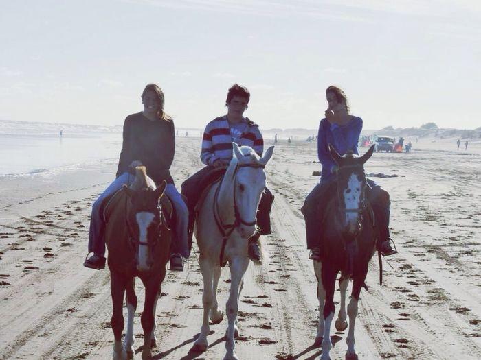 Horse ride. Taking Photos Enjoying Life Friends Relaxing