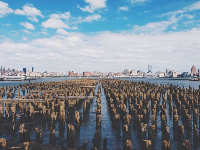 Oyster bed in sea with cityscape in background