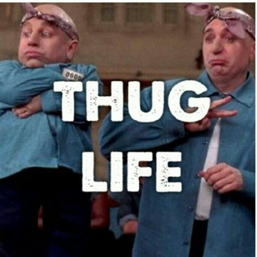Some thugs serve a bigger purpose ThugMansion Thuglife ThugHoliday Cracker LMAOO lol