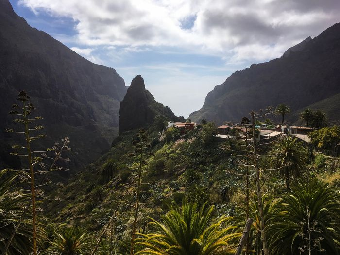 Masca Gorge, Tenerife, Canary Islands, Spain Sight Mountain Travel Nobody Tenerife Valley Gorge Masca Sky Cloud - Sky Plant Growth Tree Mountain Beauty In Nature Nature Tranquility No People Scenics - Nature Day Landscape Green Color Tranquil Scene
