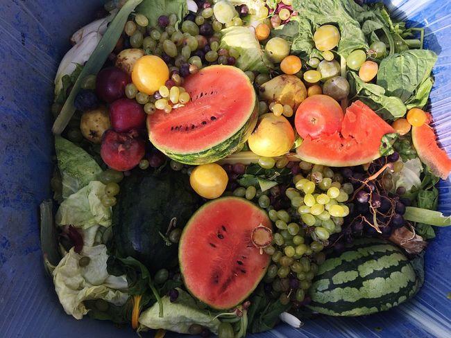 Food Trash Trash Food Wasting Food Food Waste