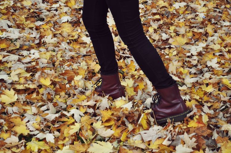 Low Section Human Body Part Human Leg Standing Autumn Leaf Outdoors Adults Only One Person One Woman Only Real People Adult Close-up Women Day People Only Women Nature Embrace Urban Life