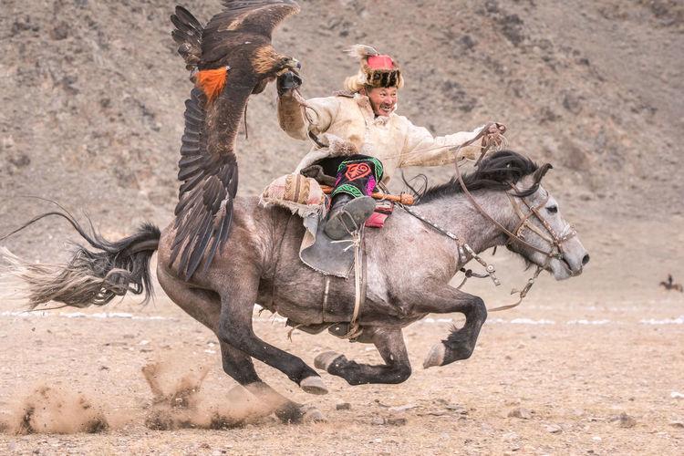 Man riding horse in desert