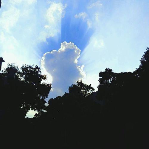 Sunmer is coming …来自广州的夏天💣