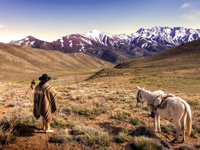 Rear view of man with horse on field against mountains