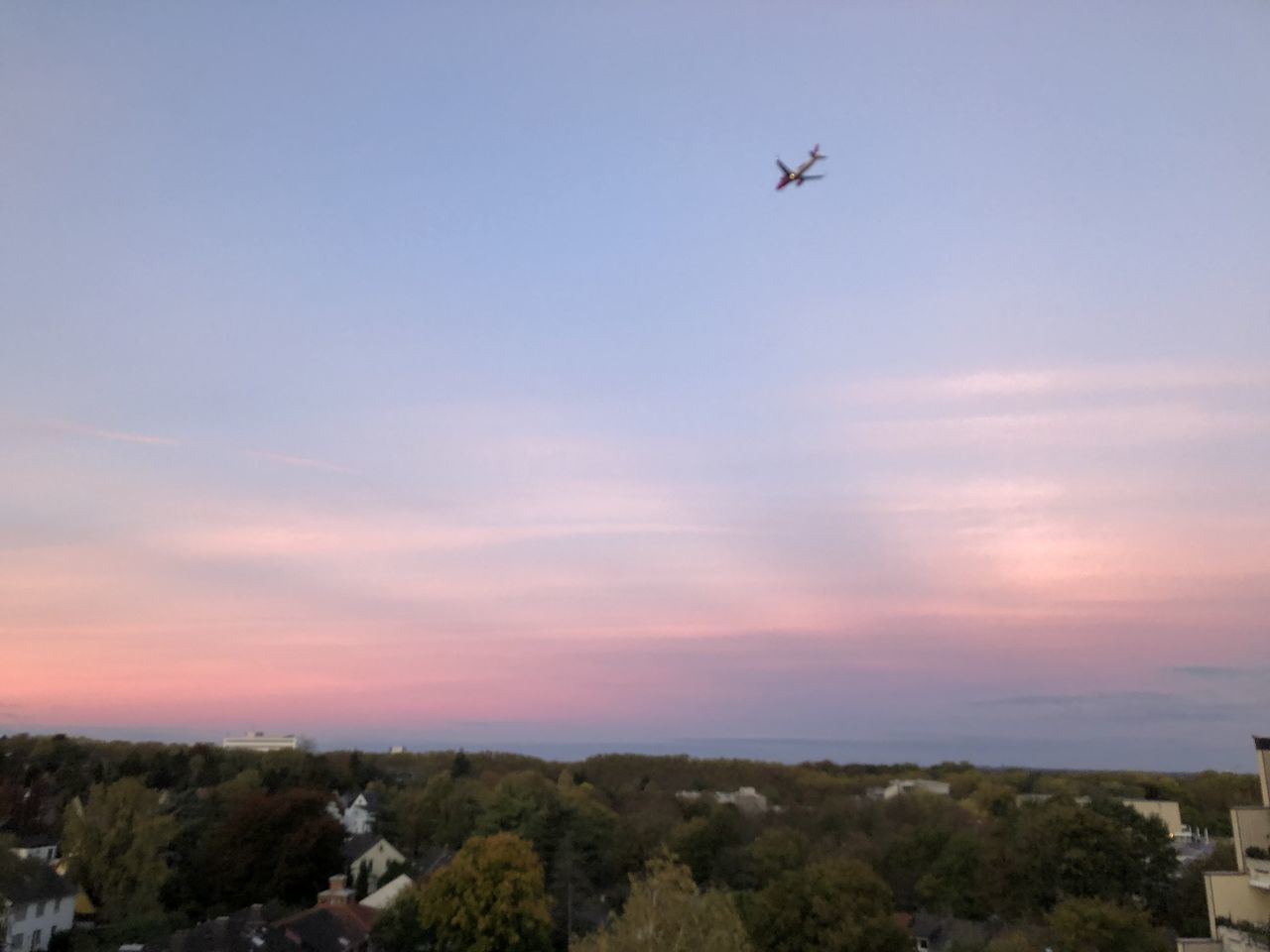 flying, sky, air vehicle, airplane, mode of transportation, transportation, mid-air, sunset, no people, beauty in nature, nature, cloud - sky, scenics - nature, low angle view, tree, vertebrate, bird, outdoors, travel, plant