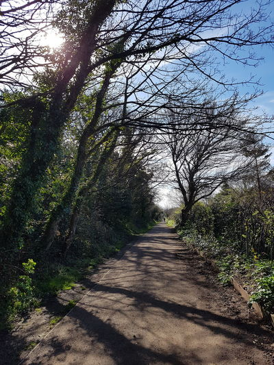 The Way Forward Nature Tranquility Beauty In Nature Pathway Wirral Way