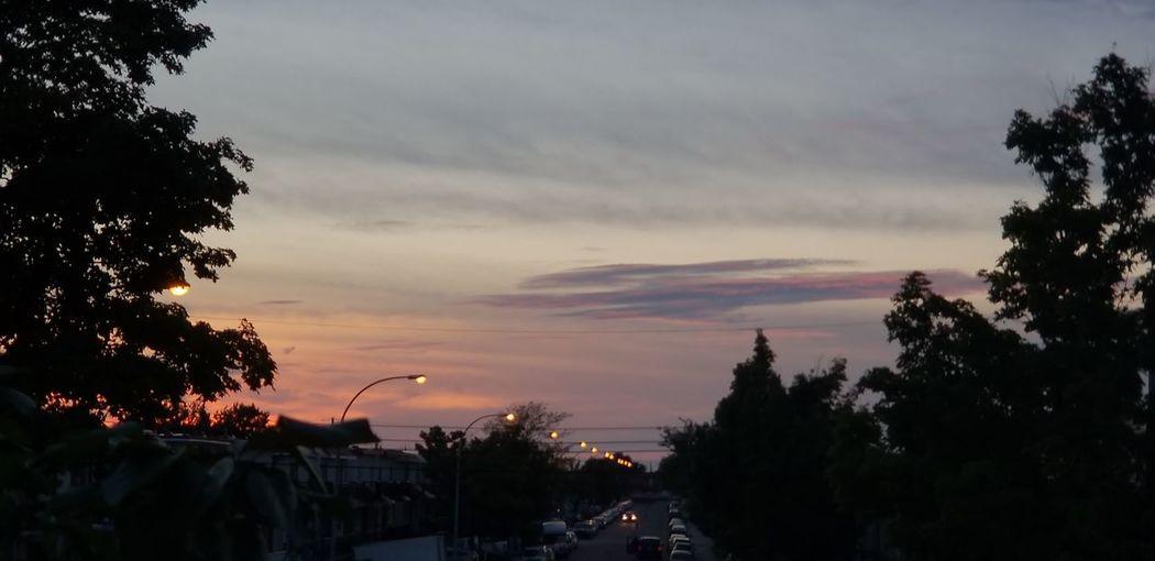 Closeup Shot Pink Red Purple Pink Blue Sky Pink Red Orange City Tree Sunset Silhouette Sky #urbanana: The Urban Playground