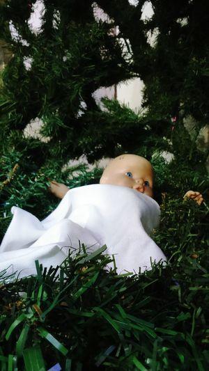 Jesus is the reason for this season... Pasko Sa Pinas Christmas 2016 Manger EyeemPhilippines First Eyeem Photo