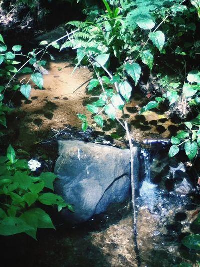 Sanmateoriohondo River Stone Taking Photos