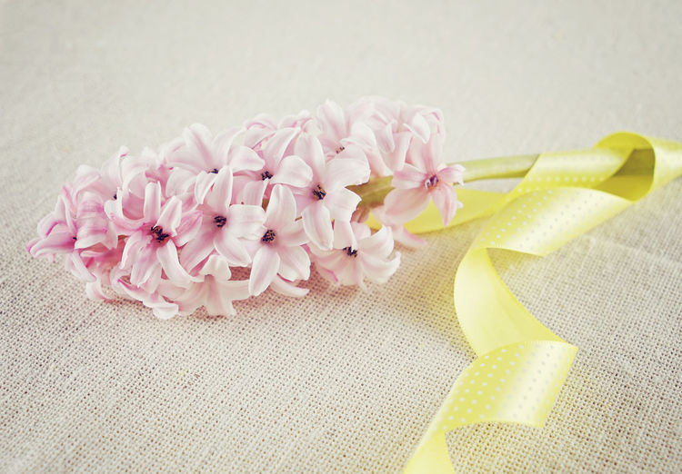 Pink Flowers With Ribbon On Fabric