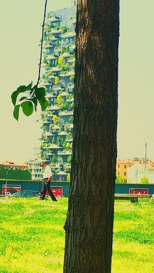 ¥solitudini ¥milan *greenSpace ₩ The Architect - 2017 EyeEm Awards Milano Giardini Verticali Grenspace Outdoors EyeEm Nature Lover EyeEm Best Shots The Street Photographer - 2017 EyeEm Awards The Great Outdoors - 2017 EyeEm AwardsWildlife Photography The Portraitist - 2017 EyeEm Awards Urbanlifestyle Over The Rainbow Camera Porn Milan,Italy