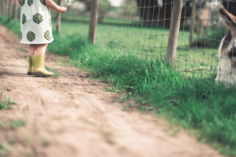 Child Childhood Day Field Girls Grass Low Section Nature One Person Outdoors Plant Selective Focus