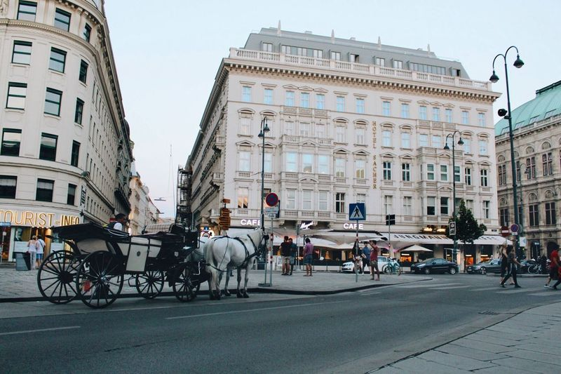 City Building Exterior Architecture Transportation Street Mode Of Transportation Built Structure Horse Cart Horse City Life Building