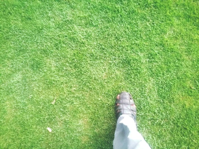 Green Color Grass High Angle View One Person Human Body Part People Outdoors Human Leg Close-up Day Adults Only Legs Shoes Onesteps