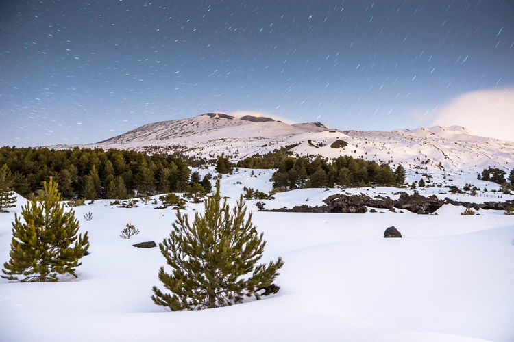 Moonlight, Volcano Etna Sicily Winter Cold Temperature Snow Beauty In Nature Scenics - Nature Mountain Tranquil Scene Sky Tranquility Plant Snowcapped Mountain Star - Space Nature No People Tree Night Idyllic Environment Non-urban Scene Astronomy Outdoors Mountain Peak Etna Winter Starry Sky