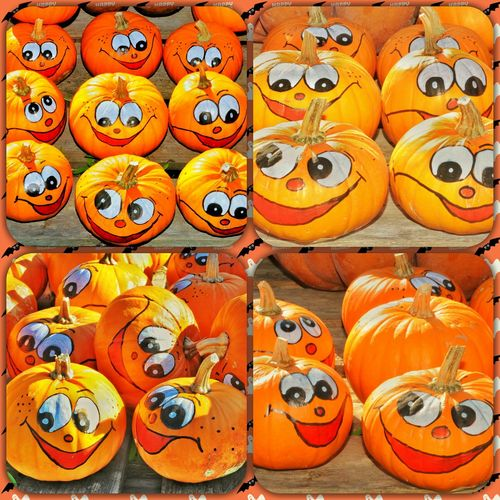 Happy Pumpkin Funny Faces Food Porn Mondsee, Austria