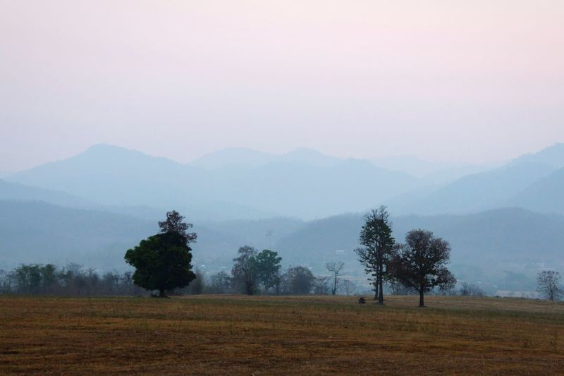 Outdoors No People Fall Season in Pai Thailand North Thailand South East Asia