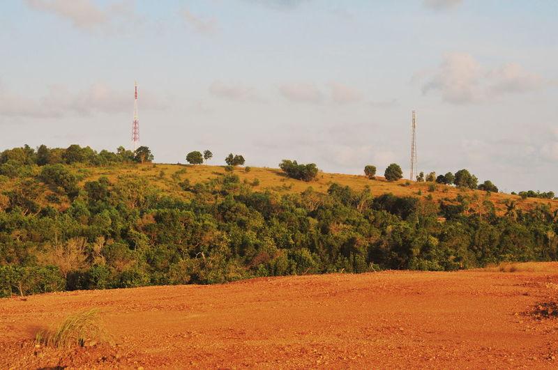 Landscape Tree Rural Scene Red Winemaking Field Crop  Sky Landscape Cloud - Sky