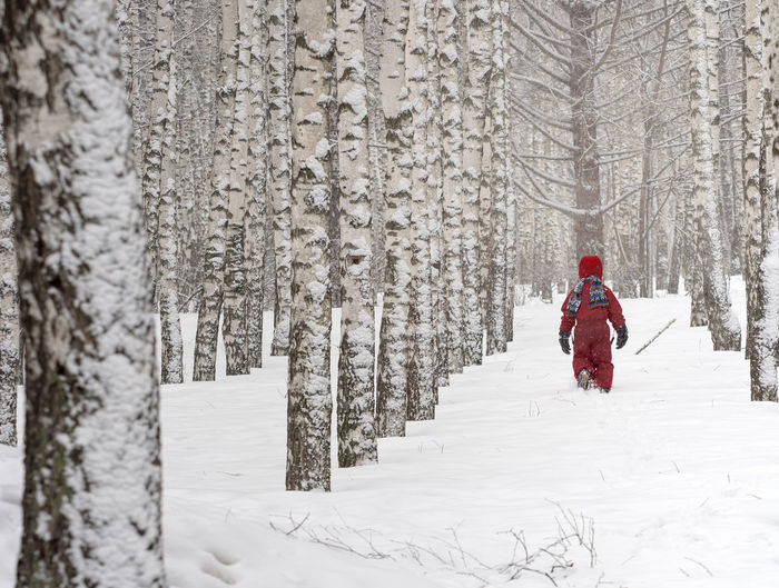 Person walking in snow covered forest