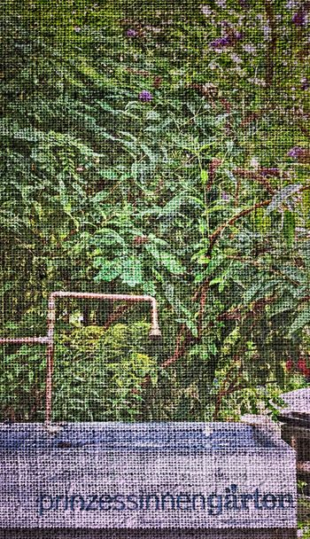 alles jute...EyeEm Nature Lover Nature_collection Urban Gardening