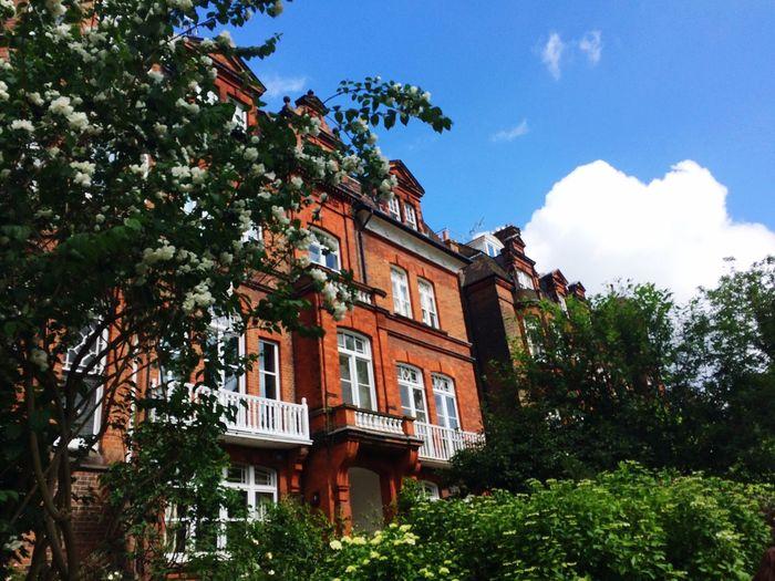 Summer Architecture London