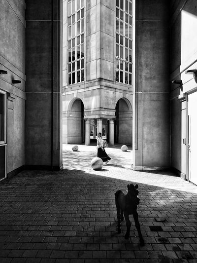 Street Photo Street Photography Streetphotography Bw monochrome photography Monochrome Black And White Blackandwhite Bnw Architecture Built Structure Building Exterior Building Real People Day Entrance City Sunlight Street Women Adult Outdoors Alley Walking Cobblestone The Architect - 2018 EyeEm Awards