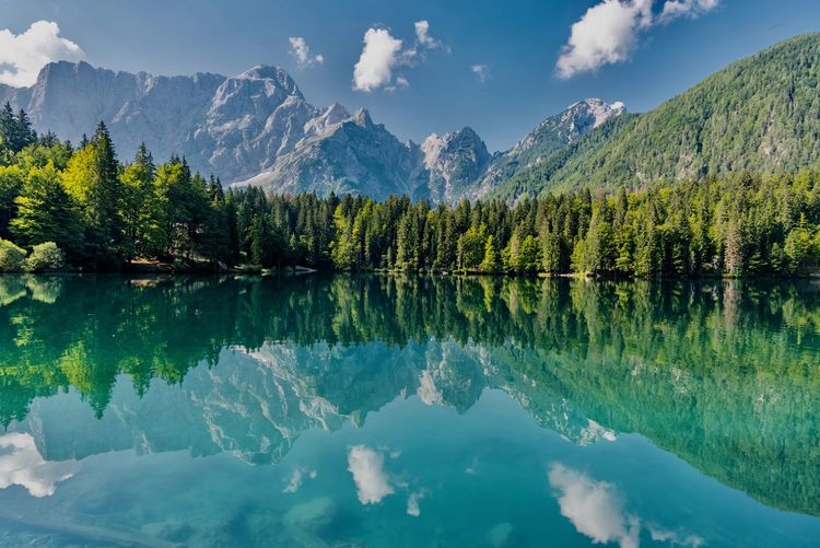 Reflection Lake Mountain Scenics - Nature Tranquility Beauty In Nature Tranquil Scene Tree Water Sky Cloud - Sky Waterfront Plant Idyllic Non-urban Scene Nature Day Symmetry No People Mountain Range Outdoors Reflection Lake