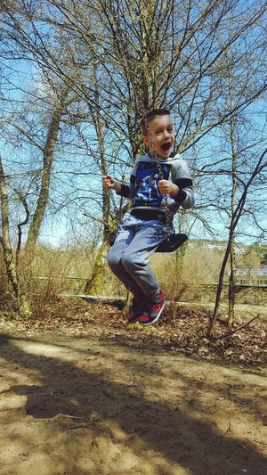 Park Swing Child Childhood Tree Playing Boys Playground